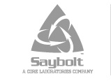 Saybolt | Deelnemer SPCS - Safety Platform Cargo Surveyors